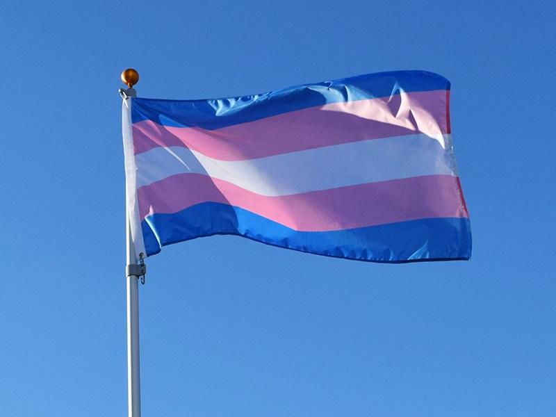transgender-flags